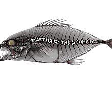 qotsa fish by dewatagedhe