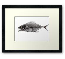 qotsa fish Framed Print