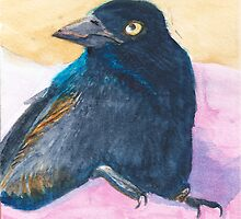 Lucky the grackle by Lucianthinus