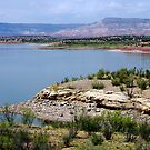 Abiquiu Lake, New Mexico by Vicki Pelham