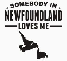 Somebody In Newfoundland Loves Me Baby Tee
