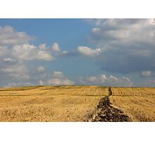 Rural Landscape in the Country Photographic Print