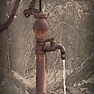 Antique Water Pump by Sherry Hallemeier