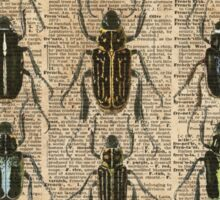 Beetles & Bugs,Insect Chart,Biological Illustration on Vintage Dictionary Book Page Background Sticker