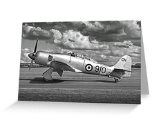 Black and white image of Hawker Sea fury. Greeting Card