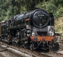 Steam by Stephen Hall