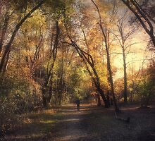 The Path that guides you by John Rivera