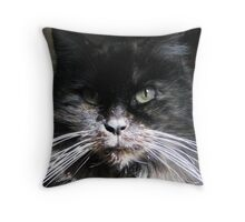 Arwen's Last Picture Throw Pillow