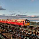 Isle of Wight Railway. by Lilian Marshall