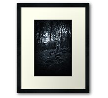 Canis Lupus ii Framed Print