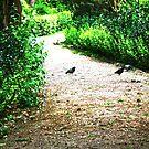 garden&birds by Yannis-Tsif
