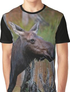 Maine Moose, cow in the water Graphic T-Shirt