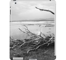 Logans Lagoon iPad Case/Skin