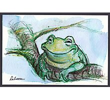 """""""Life is Good"""" - frog is very happy Photographic Print"""