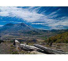 Mt St Helens Fallen Tree Photographic Print