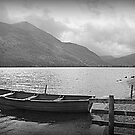 Rowing Boat by Lou Wilson