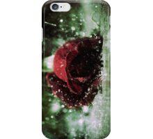Rose in the Rain iPhone Case/Skin