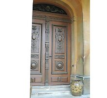Waddesdon Door Photographic Print