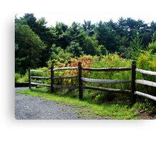 Country Fence.. Canvas Print