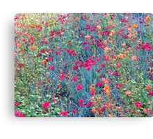 Delicate Tapestry Of Colour #3 Canvas Print