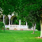 National garden(Nicosia) by Yannis-Tsif