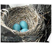 Robins Egg Blue - Verse Poster
