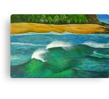 Sea Manes Canvas Print