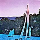 Sunset Sail Tiburon, CA by Lexi