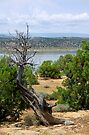 Abiquiu Lake, New Mexico #2 by Vicki Pelham