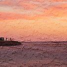 Cape Burney ~ Geraldton by Pene Stevens