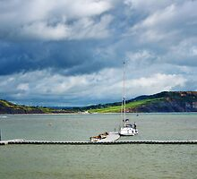 Storm Clouds Over Charmouth by Susie Peek