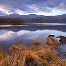Upper Lake Killarney by Michael Walsh