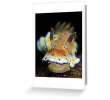 Nudibranch - Chromodoris Collingwoodi Greeting Card