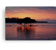 Pomegranite Warrior Canvas Print