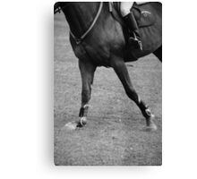 Show Jumping World Cup Canvas Print