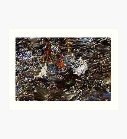 Tide Water Marsh Art Print
