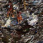Tide Water Marsh by DHParsons