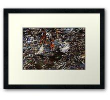 Tide Water Marsh Framed Print