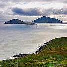 Iveragh Peninsula by Michael Walsh