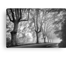 Along a Misty Lane Metal Print
