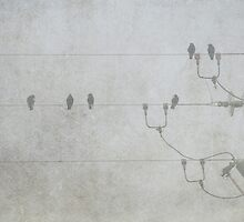 Birds on a wire. by pennyswork