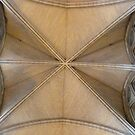 The Nave roof, Truro Cathedral by Woodie