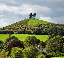 Colmers Hill ~ Symondsbury by Susie Peek