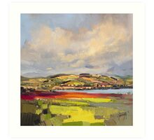 Cromarty Firth Study Art Print
