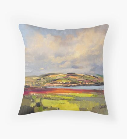 Cromarty Firth Study Throw Pillow