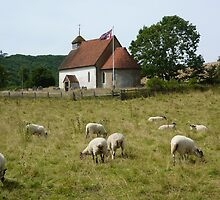 the church in the field  by shireengol
