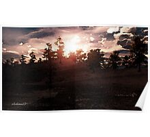 Yukon Sunrise. Poster