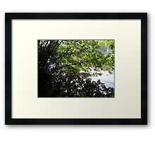 Where the leaves end and water begins... Framed Print
