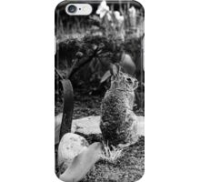 The Snail And The Bunny iPhone Case/Skin