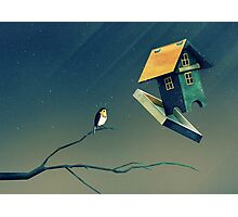 Flying Bird...house Photographic Print